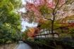 紅葉が綺麗な吟松寺というお寺。