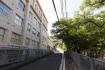 24時間ぶりの神戸です。今日も神戸山…