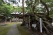 大宮八幡神社の境内には樹齢2000年…