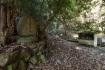 石澄滝への道を拓いた平田龍昇師の石碑…