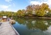 水月公園の無料な釣り池では紅葉を見な…